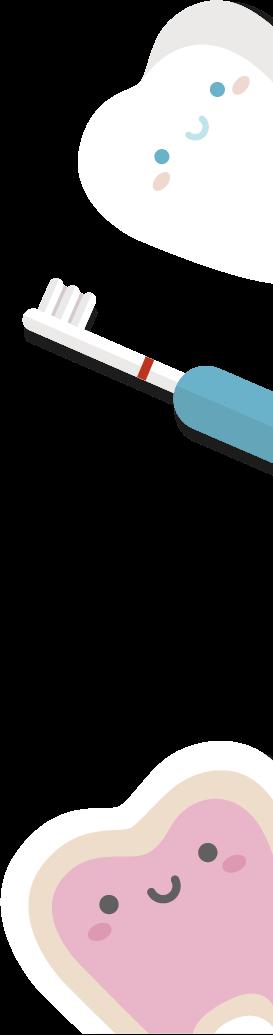 歯のイラスト2